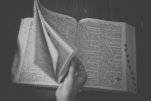 dicionario